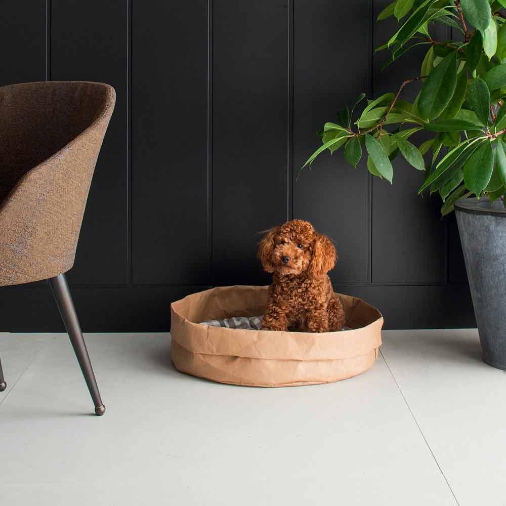 Cucce Design Per Cani cuccia per cani e gatti in fibra di cellulosa tommy, made in italy