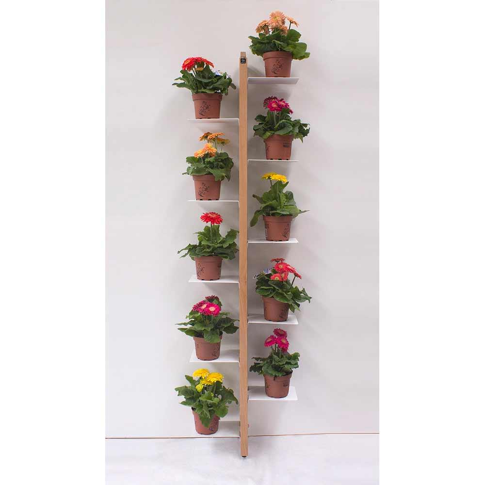 Zia flora portavasi da terra fissato a parete a prezzi for Portavasi da interno