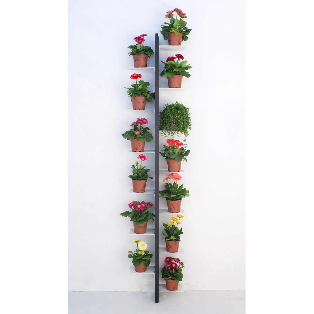 Zia flora portavasi da terra fissato a parete a prezzi - Portavasi in ferro ikea ...