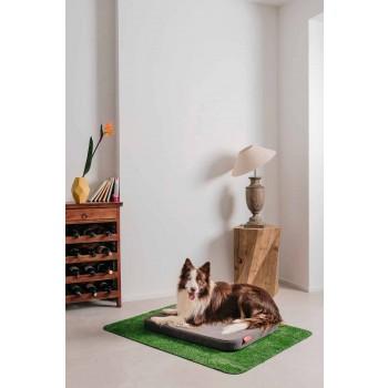 Cuccia per Cani con Cuscino e Tappeto in Erba Sintetica Made in Italy - Gioco