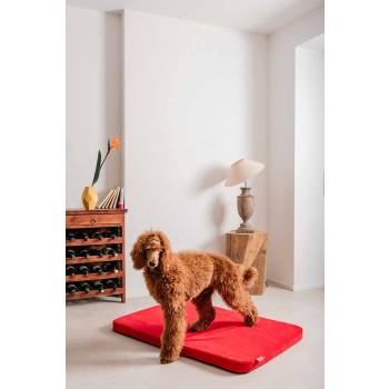 Cuccia per Cani da Interno in Microfibra Sfoderabile Made in Italy - Semplice